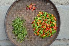 pepe di peperoncini rossi Fotografie Stock