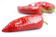 Pepe di peperoncini rossi rossi Immagini Stock Libere da Diritti