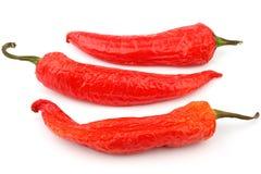 Pepe di peperoncini rossi rossi Immagine Stock Libera da Diritti