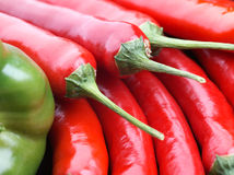 Pepe di peperoncini rossi rossi Fotografia Stock