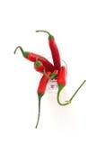 Pepe di peperoncini rossi rovente fresco Immagini Stock