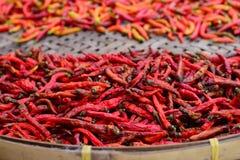 Pepe di peperoncini rossi rovente secco dei peperoncini rossi Immagini Stock Libere da Diritti