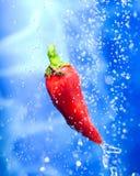 Pepe di peperoncini rossi in una spruzzata dell'acqua fotografie stock libere da diritti