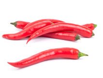 Pepe di peperoncino rosso Fotografie Stock