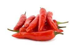 Pepe di peperoncino rosso Immagine Stock Libera da Diritti