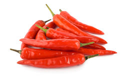 Pepe di peperoncino rosso isolato Immagine Stock