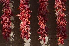 Pepe di peperoncino rosso Ristra Fotografia Stock