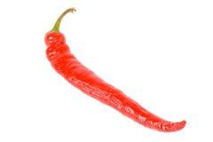 Pepe di peperoncino rosso rosso. Fotografia Stock