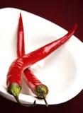 Pepe di peperoncino rosso rosso due Fotografia Stock Libera da Diritti