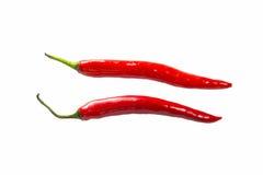 Pepe di peperoncino rosso rosso isolato Immagine Stock