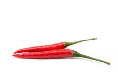 Pepe di peperoncino rosso rosso isolato Immagini Stock Libere da Diritti