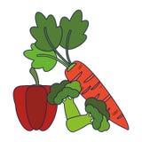 Pepe e broccoli con le linee blu delle carote illustrazione vettoriale
