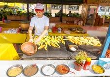 Pepe e salsa da su Roshtilyade Leskovtse in Serbia Fotografia Stock