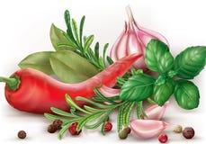 Pepe e spezie di peperoncino rosso Fotografie Stock