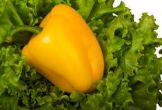 Pepe giallo bulgaro sulla lattuga di foglio verde. immagini stock
