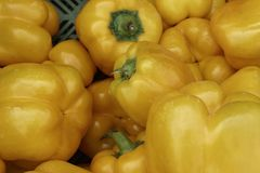 Pepe giallo fresco Immagini Stock Libere da Diritti