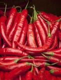 Pepe rossi caldi freschi Fotografia Stock