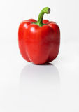 Pepe rosso Fotografie Stock