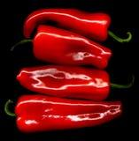 Pepe rosso Fotografia Stock