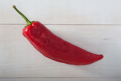 Pepe rosso fotografia stock libera da diritti