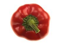 Pepe rosso dolce fotografia stock libera da diritti