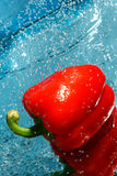 Pepe rosso fresco Immagine Stock Libera da Diritti
