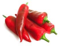 Pepe rosso su priorità bassa bianca Immagine Stock