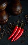 Pepe sul cucchiaio di legno Fotografia Stock