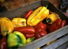 Peper bij Markt Stock Foto's