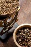 Peper en antieke schalen Royalty-vrije Stock Foto's