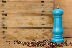 Peper en pepermolen Stock Afbeeldingen