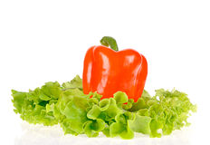 Peper en saladeblad stock foto
