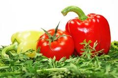 Peper en tomaat Royalty-vrije Stock Foto's
