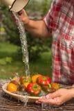 Peper en tomaten onder lopend water stock afbeelding