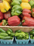 Peper, Groen Rood, Geel, Oranje, Royalty-vrije Stock Foto's