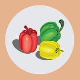 Peper, Groen Rood, Geel, Oranje, Royalty-vrije Stock Afbeeldingen