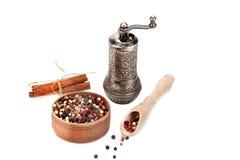 Peper, kaneel en molen Stock Foto's