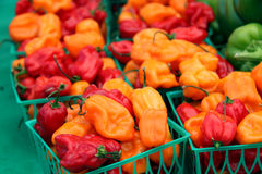 Peper op markt Stock Afbeelding