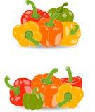 Peper, reeks gele, rode, groene en oranje peper en peterseliebladeren, illustratie Stock Afbeelding