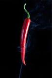 Peper sul nero Fotografia Stock Libera da Diritti