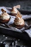 Peperkoek cupcakes met kaneel en Kerstmiskoekjes en sneeuwvlok die wordt de verfraaid bestrooit Royalty-vrije Stock Foto