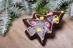 Peperkoekkoekje in de vorm van Kerstbomen Royalty-vrije Stock Foto