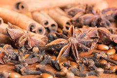 Peperkoekkruiden, sterrenanijszaad, sinnamon, kruidnagels Royalty-vrije Stock Foto