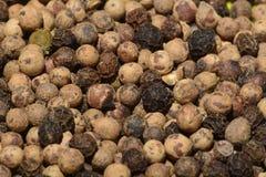 Peperkorrels Stock Foto's