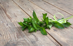 Pepermint plants on wooden table Stock Photo