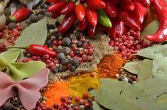 Peperoncini e spezie roventi di colori Fotografia Stock