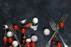 Peperoncini ed aglio secchi su fondo scuro Fotografia Stock