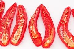 Peperoncini piccanti Lizenzfreie Stockbilder