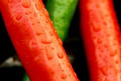 Peperoncini rossi 3 Fotografia Stock