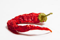 Peperoncini rossi Immagine Stock Libera da Diritti